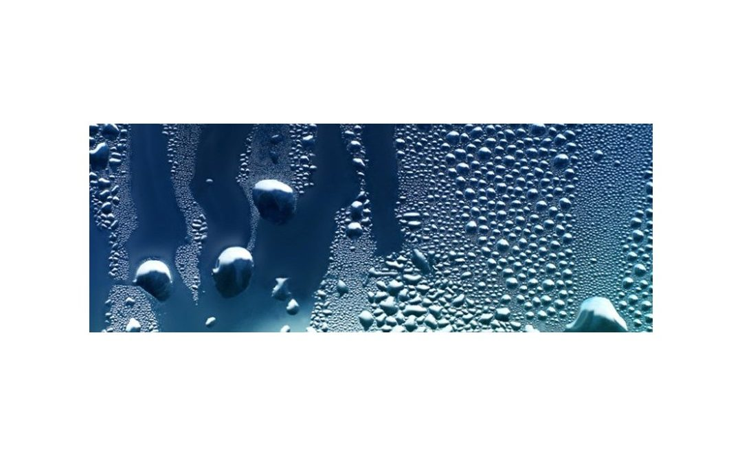 Moisture problems: types, causes, and solutions